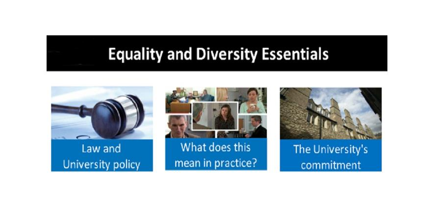nvq 5 equality and diversity essay With regards to monitoring and reviewing equality and diversity strategy plan, policies and procedures, current equality and diversity training programs, informal or unwritten work practices and arrangement for consultation and participation.